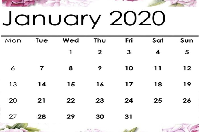 Cute January 2020 Calendar Wallpaper Design